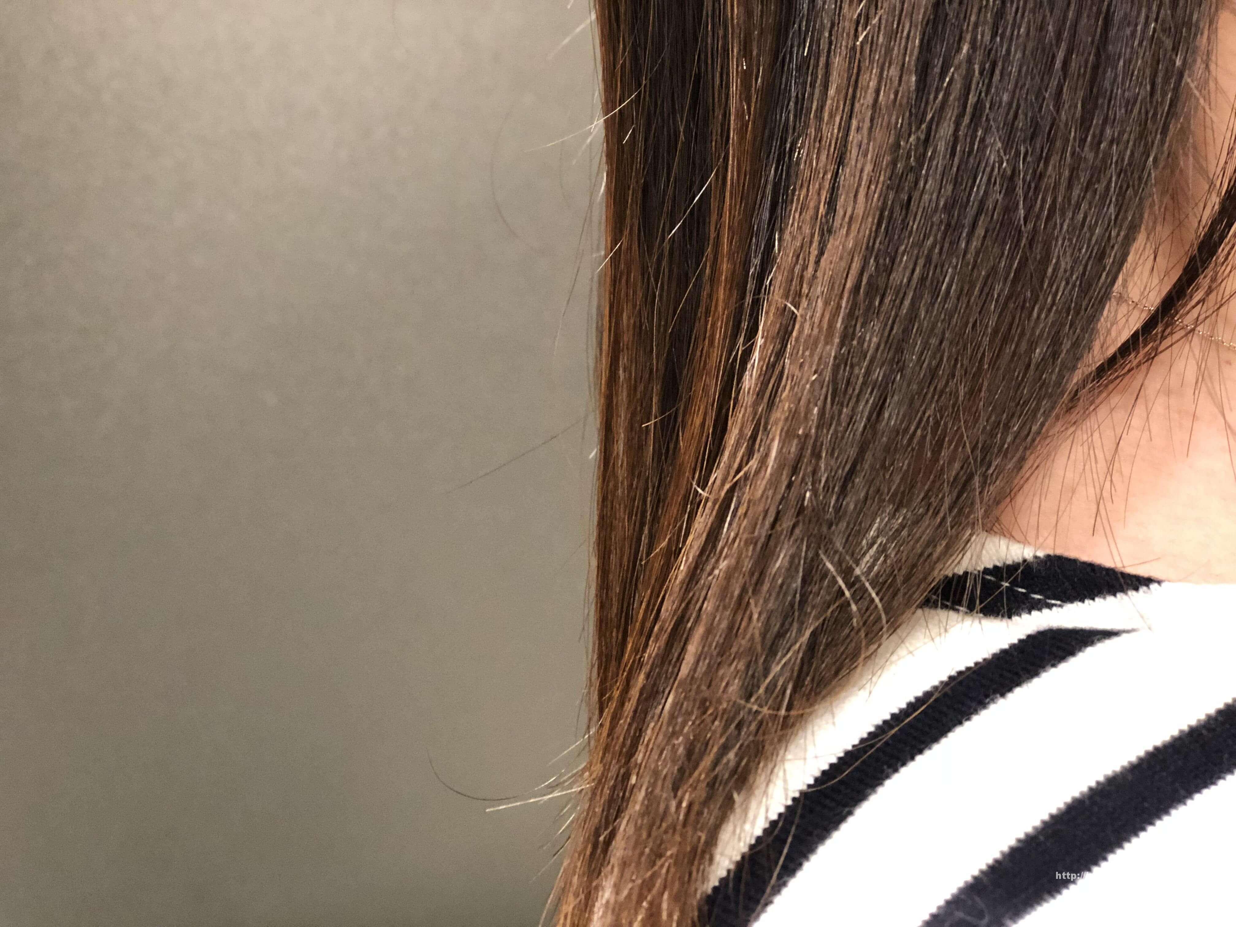 ヘアビューロン 4D Plus使用前の髪