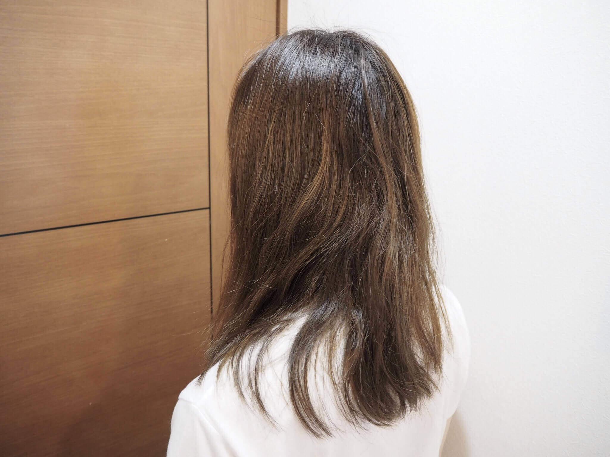 ヘアビューロン 4D Plus,使用前の髪
