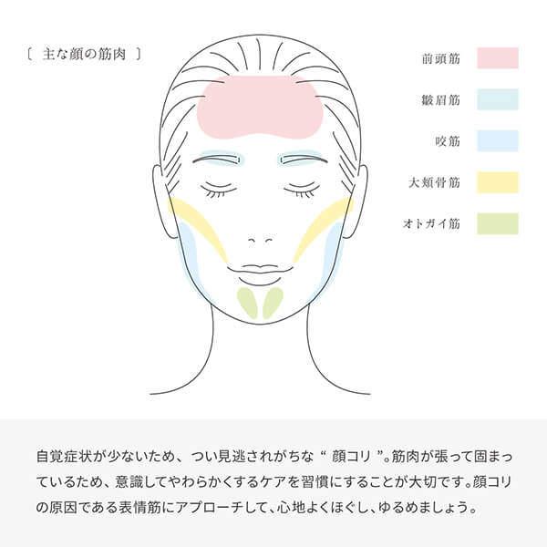 """自覚症状が少ないため、 つい見逃されがちな""""顔コリ""""。 筋肉が張って固まっているため、 意識してやわらかくするケアを習慣にすることが大切です。 顔コリの原因である表情筋にアプローチして、 心地よくほぐし、ゆるめましょう。"""